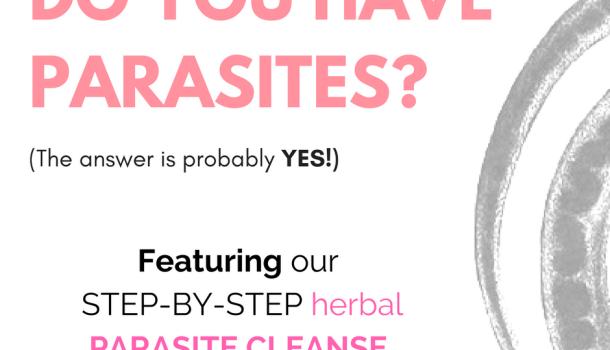 Autumn = harvest time!